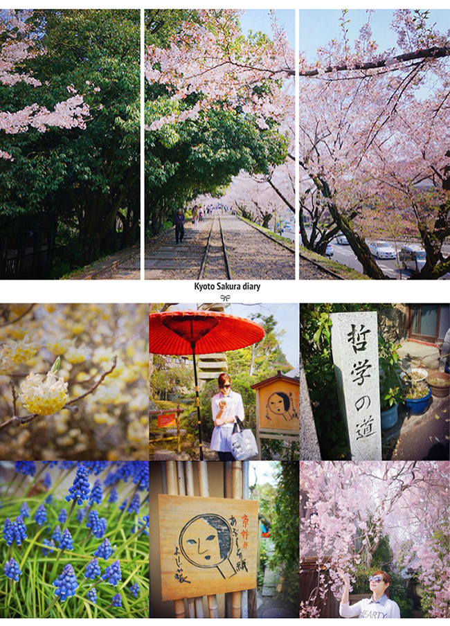 【2014京阪賞櫻】蹴上傾斜鐵道+哲學之道櫻花大滿開 @凱的日本食尚日記