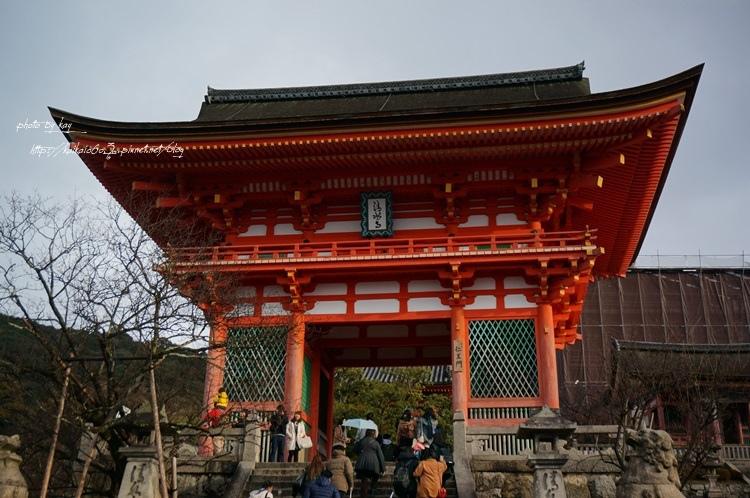 【2014大阪過聖誕】冬天的哲學之道+清水寺的冷颼颼風景 @凱的日本食尚日記