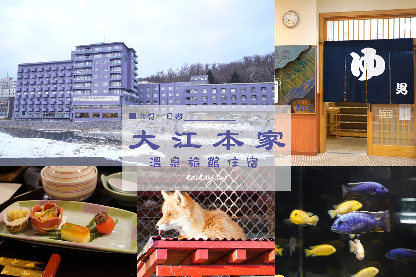 ☆【2020。北海道】北見一日遊:大江本家溫泉旅館+北見狐狸村、北の大地の水族館 @凱的日本食尚日記