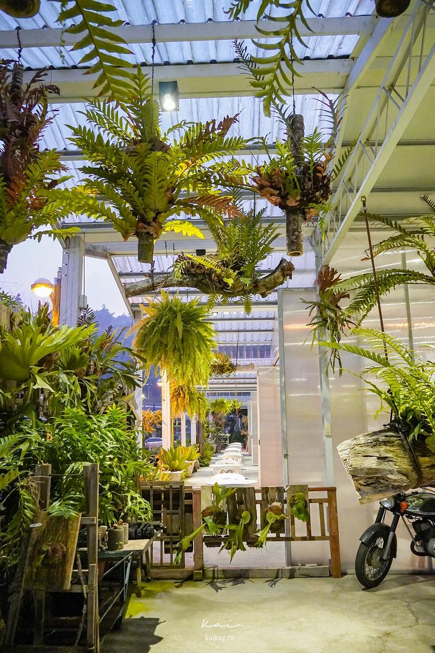 ☆【嘉義】IG美照拍起來!梅山超夯景點|森林系空氣圖書館