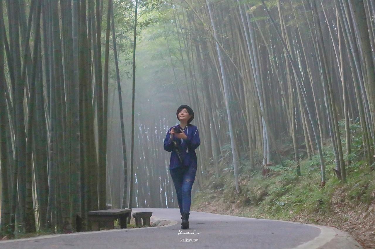 ☆【嘉義】梅山空靈之美。在地人精選11個超好拍景點懶人包