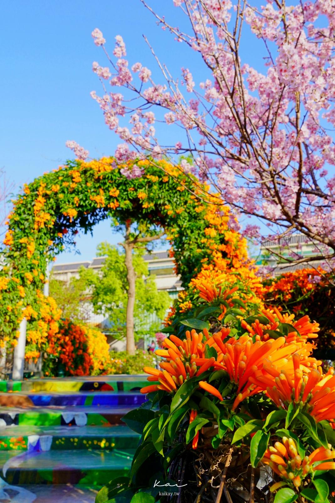 ☆【新北|鶯歌】絕美櫻花、炮仗花隧道、三層樓高螺旋溜滑梯。鶯歌永吉公園