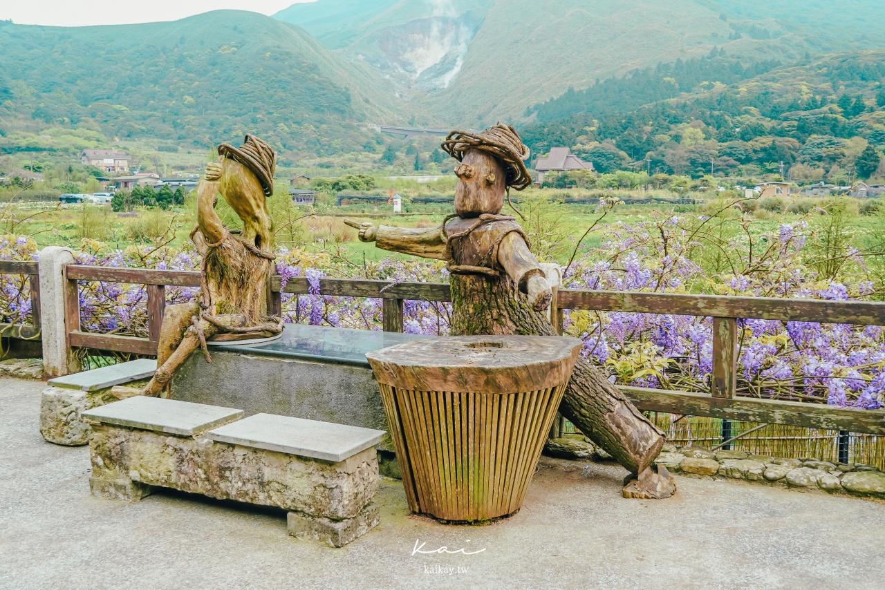 ☆【台北|陽明山】名陽匍休閒農莊。海芋園中的森林小木屋、盪鞦韆。2021海芋花況