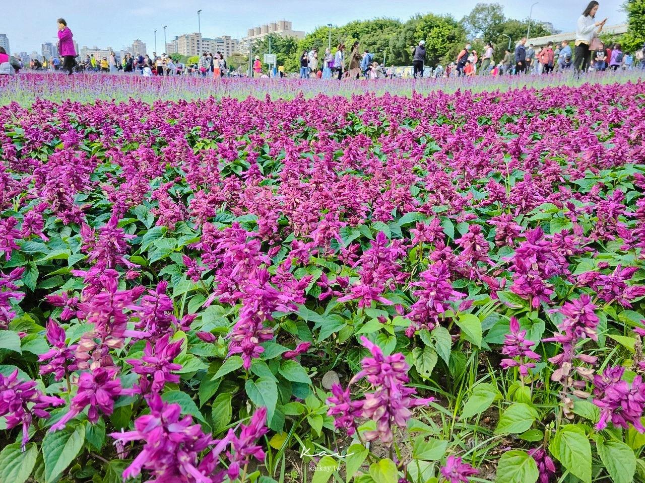 ☆【台北|公館】搭捷運賞花趣。古亭河濱公園夢幻紫色花海