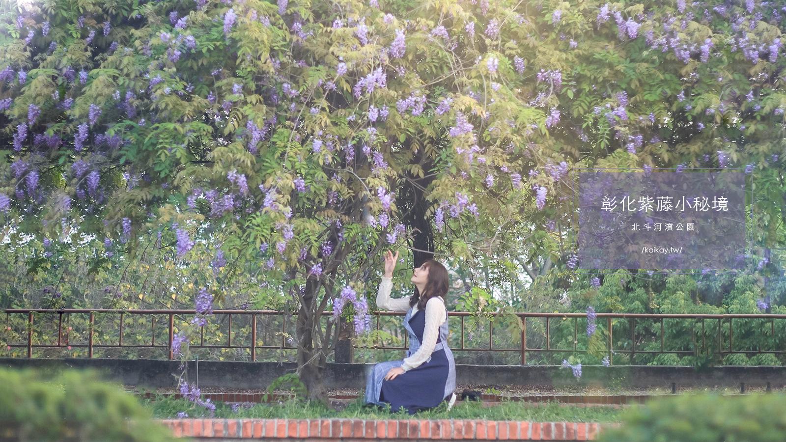 ☆【彰化景點】紫藤小秘境:浪漫紫色廊道|北斗河濱公園 @凱的日本食尚日記