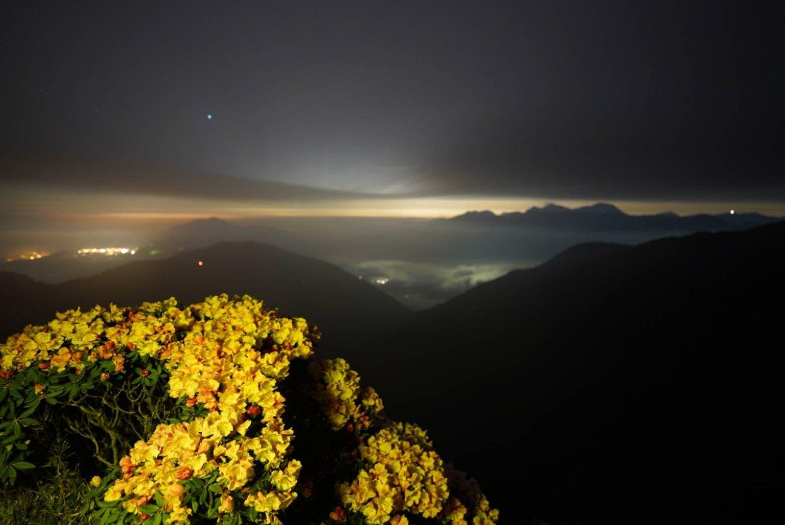 ☆【南投景點】合歡山夜訪高山杜鵑、鳶峰觀星。全亞洲第三個暗空公園。