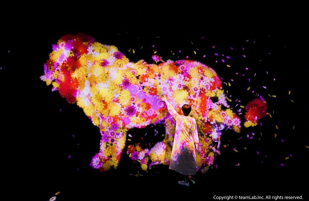 ☆【展覽】2021「 teamLab 未來遊樂園&與花共生的動物們」特展
